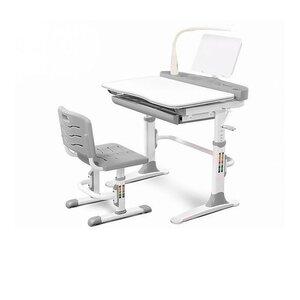 Комплект парта и стульчик Evo-kids Evo-19 (с лампой) серый