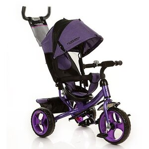 Трехколесный велосипед Turbo Trike М 3113 пена,фиолетовый